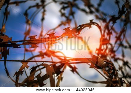 stabbing sharp wire on the fence of the protected object at sunset