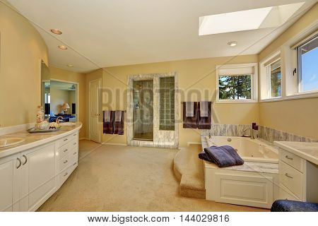 Master Marble Bathroom Interior With Long White Vanity