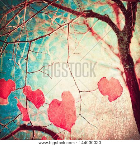 Heart shaped leafs in a tree in autumn