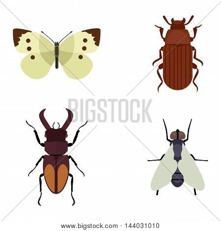 Insect icons flat set isolated on white background. Insects flat icons vector illustration. Nature flying insects isolated icons. Ladybird, butterfly, beetle vector ant