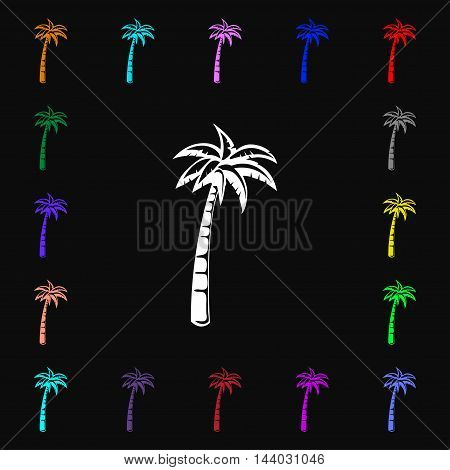 Palm Icon Sign. Lots Of Colorful Symbols For Your Design. Vector