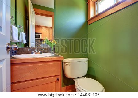Green Powder Room With Sink And Toilet