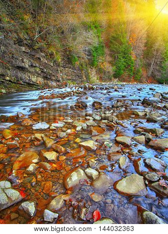 mountain river in autumn time. Rocky shore. Colourfull forest