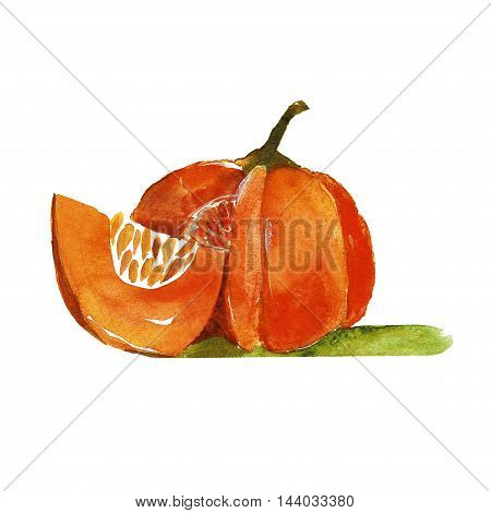 Watercolor icon of pumkin Hand drawn image