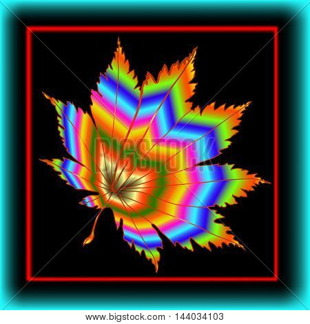 Maple Leaf in the frame. Colorful maple leaf in a colorful frame on a black background.