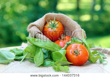 Three Cherry tomatoes on a burlap cloth with basil leaves and shallow depth of field copy space