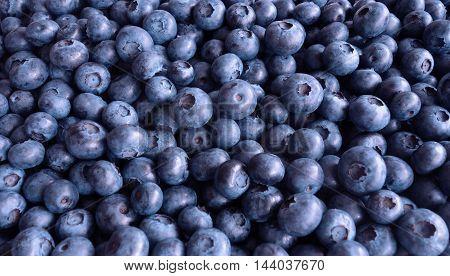 Blueberry healthy fresh summer fruit food background.