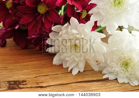 A bouquet of maroon and white asters on a wooden background