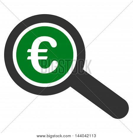 Euro Financial Audit icon. Glyph style is bicolor flat iconic symbol, green and gray colors, white background.