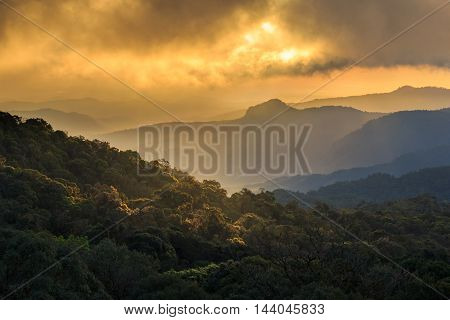 Golden sunbeams of autumn on a misty of Inthanon Mountain Chiang Mai Thailand