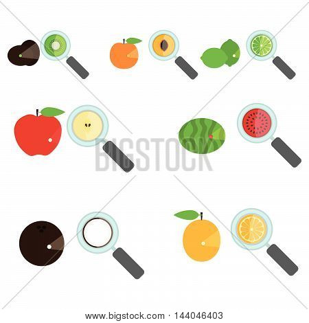 Set of fruit amplified by a loupe. Magnifying glass showing the inside of the fruit. Piece of fruit. White background. Isolated.