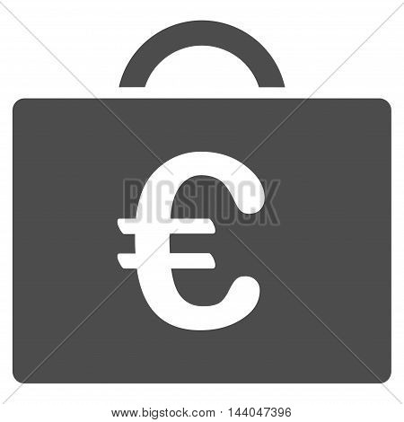 Euro Bookkeeping Case icon. Glyph style is flat iconic symbol, gray color, white background.