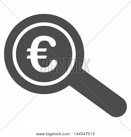 Euro Financial Audit icon. Glyph style is flat iconic symbol, gray color, white background.