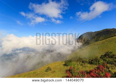 Wide meadow with mist and clouds in blue sky on sunshine day at Inthanon Mountain Chiang Mai Thailand