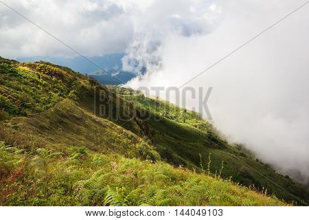 Wide meadow with mist and clouds on sunshine day at Inthanon Mountain Chiang Mai Thailand