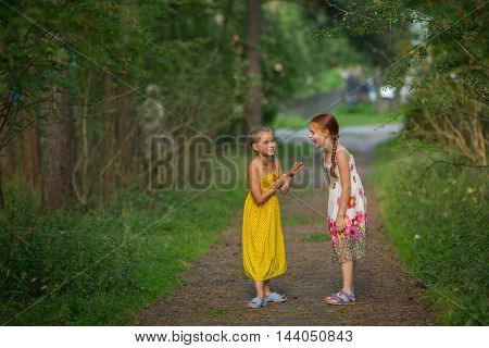 Two little girls emotionally talking in the Park.