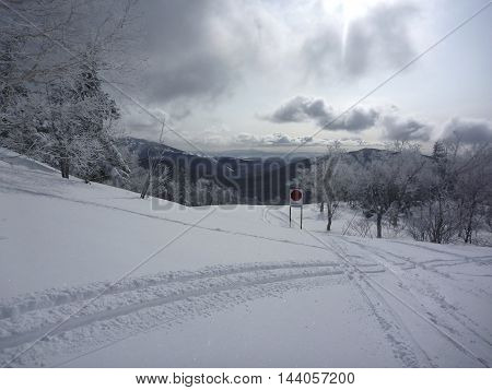 Winter landscape of mountains trees in the snow and ski traces on