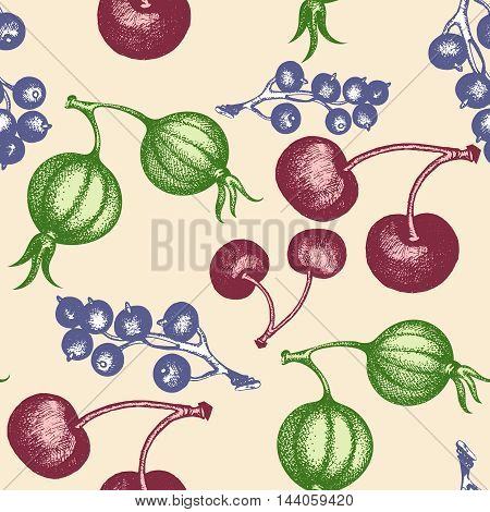 Berries seamless pattern gooseberry currant cherry vintage ink hand drawn vector
