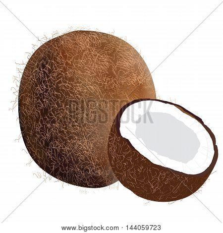 Coconut Icon slice fruit beverage drink nut cocktail