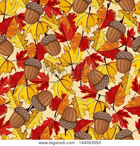 Autumn vector seamless pattern. Hand draw autumn leaves background. Autumn leaves concept. Different autumn leaves. Abstract leaves. Autumn frame.