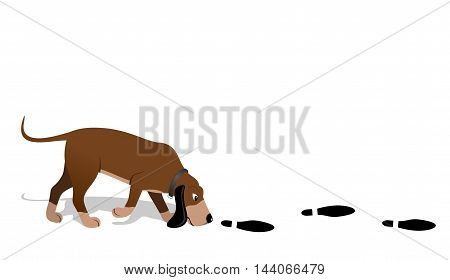 Bloodhound - Vector illustration - EPS .