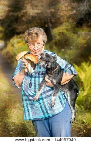 Proud Mushroom Seeker Elderly Woman With Schnauzer Dog On Her Hands