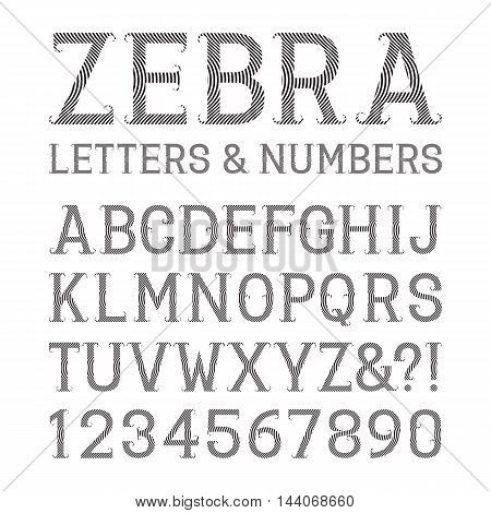 Black striped letters and numbers with flourishes. Artistic font of Zebra pattern. Isolated latin alphabet with figures.