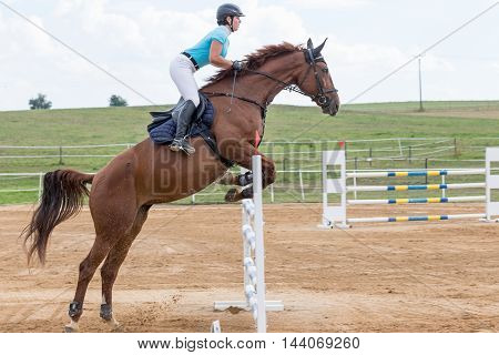 SVEBOHOV CZECH REPUBLIC - AUG 20: Side view of horsewoman during the high jump on a brown horse at