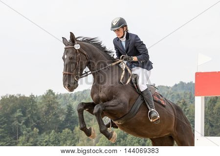 SVEBOHOV CZECH REPUBLIC - AUG 20: Closeup view of horsewoman in jump on a dark horse at