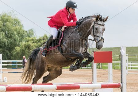 SVEBOHOV CZECH REPUBLIC - AUG 20: Closeup view of horsewoman in red jacket is jumping a roan horse at