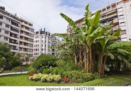Small urban garden in San Sebastian, Spain