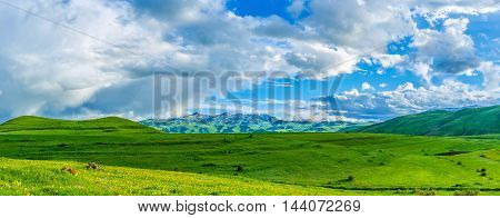 The landscape of Syunik Province highland covered with juicy grass perfect for graze of farm animals Armenia.