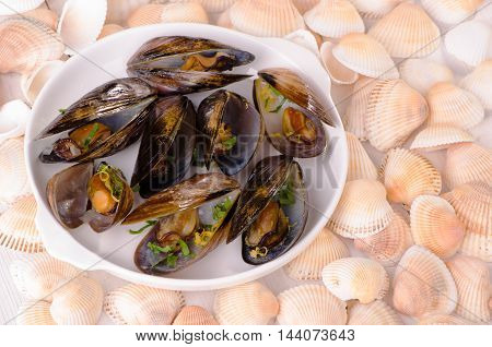 A dish of mussels with zest and parsley on a background of seashells