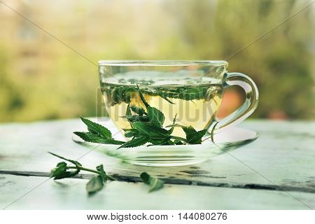 Cup of sage tea on blurred natural background