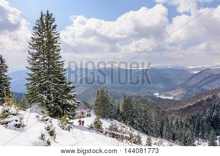 Panoramic view with two skiers and covered trees. Winter landscape of snow-covered trees on mountains with beautiful sky.