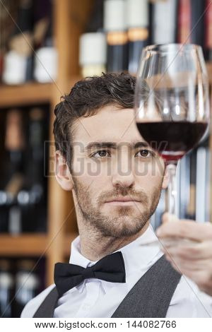 Closeup Of Bartender Examining Red Wine