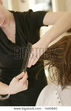 Women Having Her Hair Cut