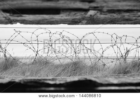 View of a barbed wire bunker in Normandy France