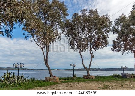Embankment and trees in Ammouliani island, Athos, Chalkidiki, Central Macedonia, Greece