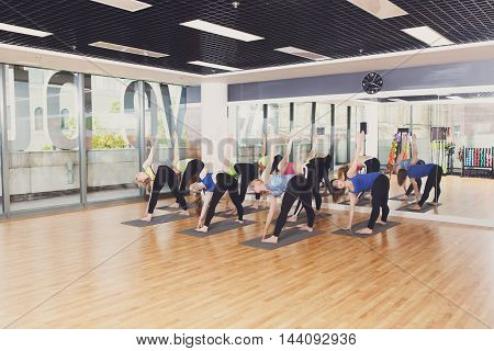 Group of young women in yoga class making aerobic exercises. Girls do leg stretching. Healthy lifestyle in fitness club