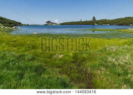 Green Grass around Bezbog lake, Pirin Mountain, Bulgaria
