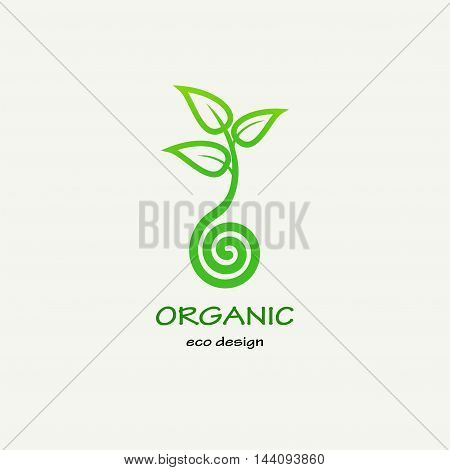 Symbolic sprout tree spiral. Template for creating logos, emblems, monograms. Plant, nature and ecology