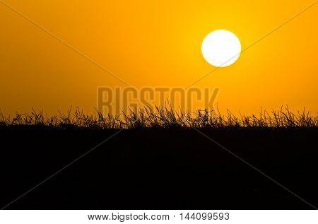 Sunset over mediterranean dry grass near sea coast in Sithonia, Greece