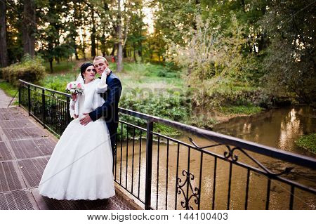 Wedding Couple At The Steel Bridge Under The River