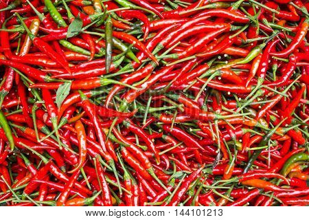 chili, food, Fresh chilli, red pepper, paprika, pepper, pepper market