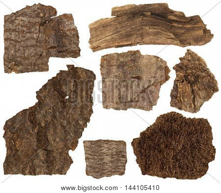 Collage set of dried bark and parts of pine tree trunk isolated on white background