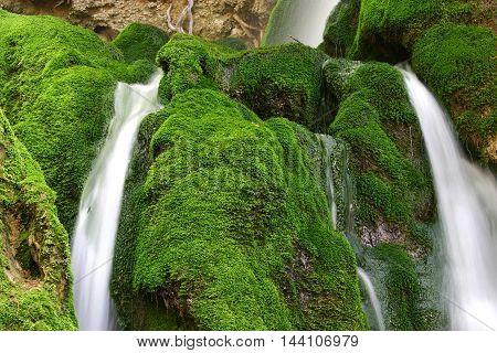 beautifull freshness waterfalls with the green moss