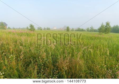 Beautiful Nature Landscape With Homes And Foggy Meadow