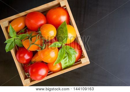 Red and yellow tomatoes and basil in box on a black background. Top view with copy space.