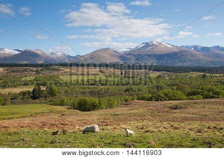 Scottish countryside and snow topped mountains Ben Nevis Scotland UK in the Grampians Lochaber Highlands near Fort William
